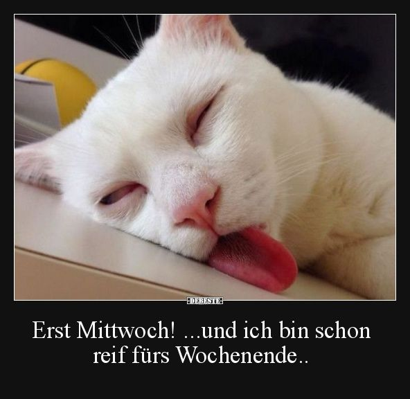 Best pictures, videos and sayings and there are daily new funny Facebook … – witzig