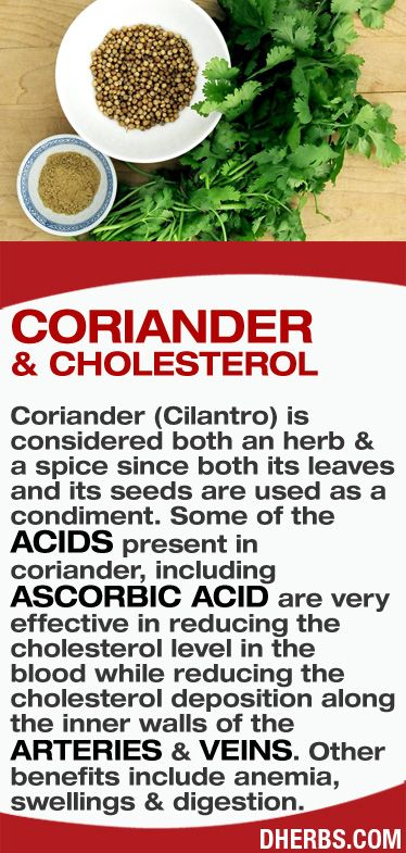 Coriander (Cilantro) is considered both an #herb & a spice since both its leaves and its seeds are used as a condiment. Some of the acids present in coriander, including ascorbic acid are very effective in reducing the cholesterol level in the blood while reducing the cholesterol deposition along the inner walls of the arteries & veins. Other benefits include anemia, swellings & digestion. #dherbs #healthtips
