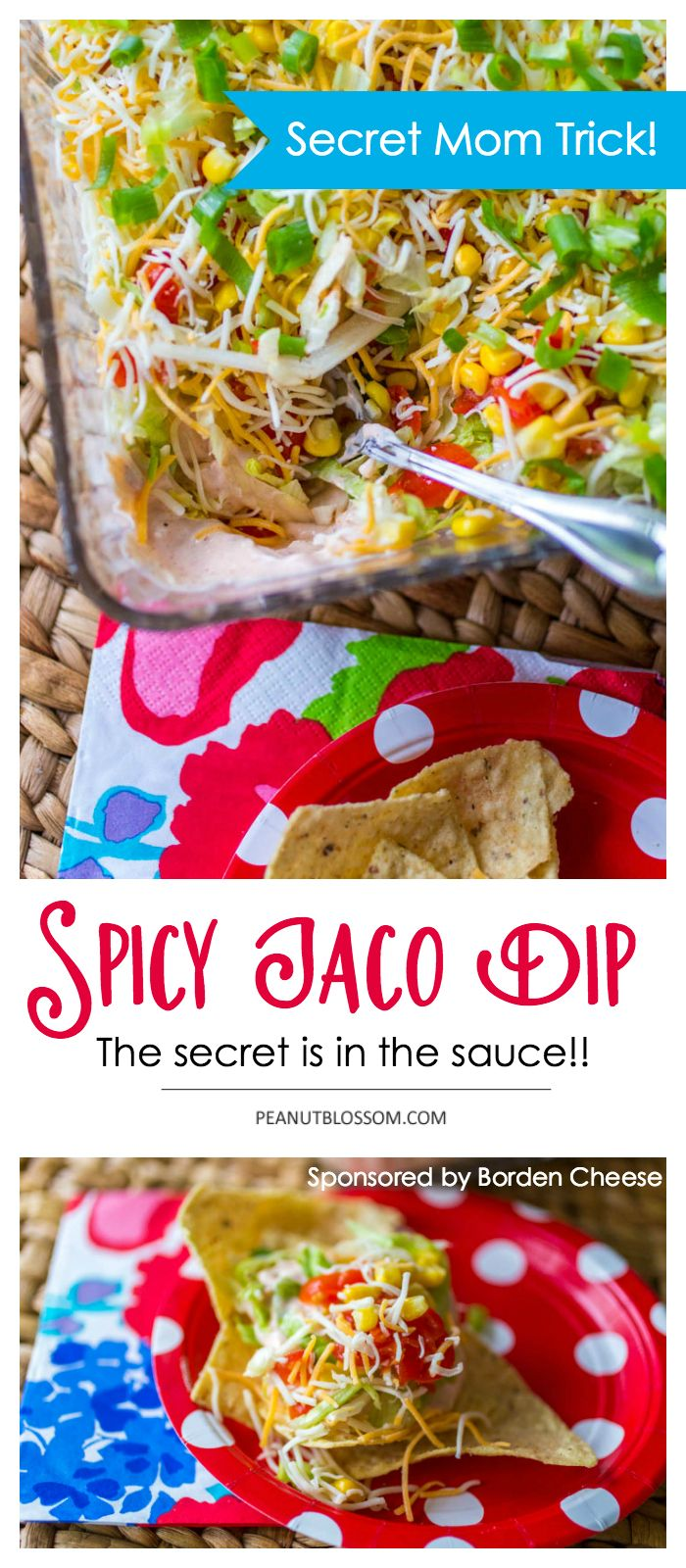 Mom's Kitchen Secrets for making the best ever spicy taco dip. This is the perfect party appetizer recipe, there are never any leftovers! Guests gobble it right up. Perfect for your next pot luck or grill out.