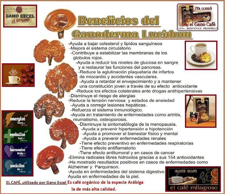 Estos anuncios son para mis amigos españoles lectura. Obtenga más información aquí: http://us.ganoexcel.com/lockettshp