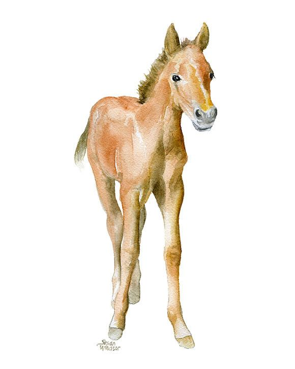 Horse watercolor giclée reproduction. Portrait/vertical orientation. Printed on fine art paper using archival pigment inks. This quality printing allows over 100 years of vivid color in a typical home