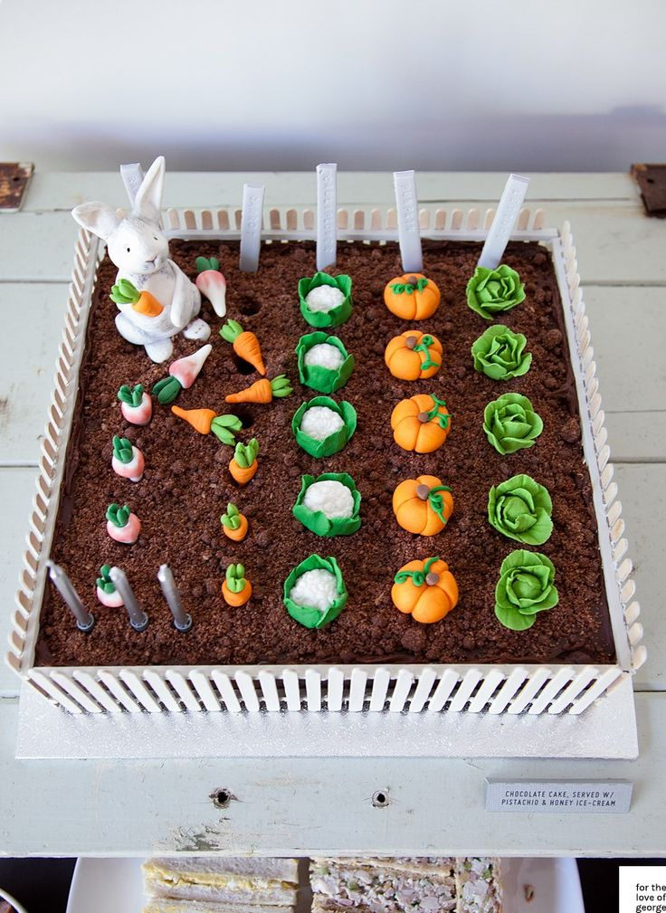 Rabbit Vegetable Garden Cake-1833