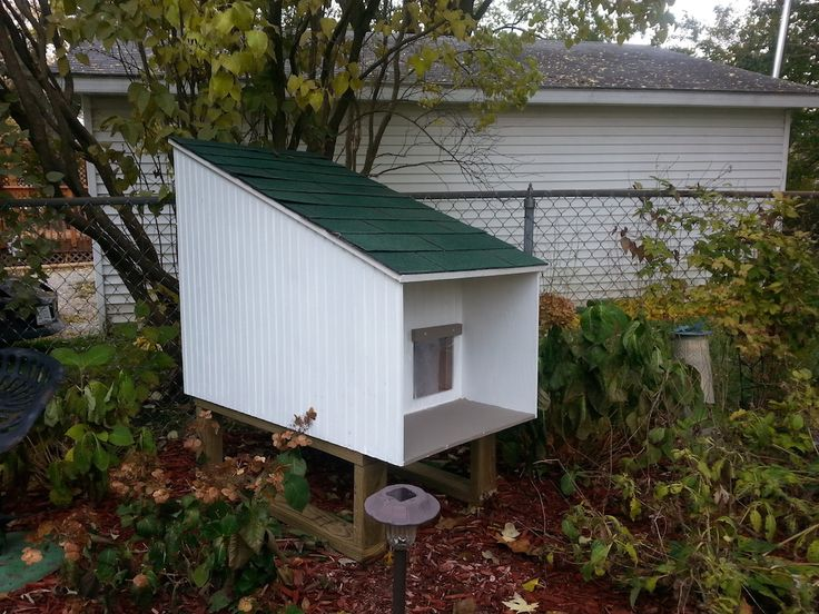 Building Outdoor Shelters : Best images about feral cat help on pinterest