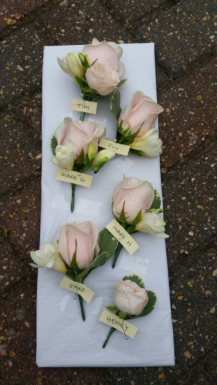 Blush pink rose buttonholes - to be on their own with a bit of foliage