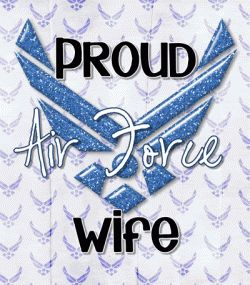 I Am an Air Force Wife    I've noticed in my present job there is this tiny quirk  There is no respect at all, and it's not considered work.  Well...