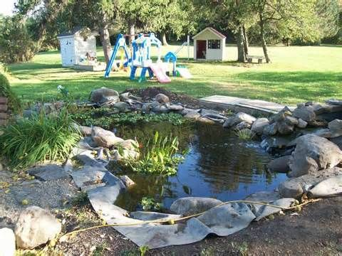 1000 images about building a backyard pond with florida for Building a coy pond