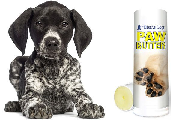 DOG PAW BUTTER Organic Handcrafted Moisturizing Balm for Dry, Rough Dog Paw Pads .75 oz Twist-up Tube in Gift Bag