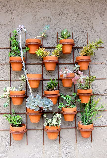 plants on a wall Except use horse shoes if at all possible for the metal holders