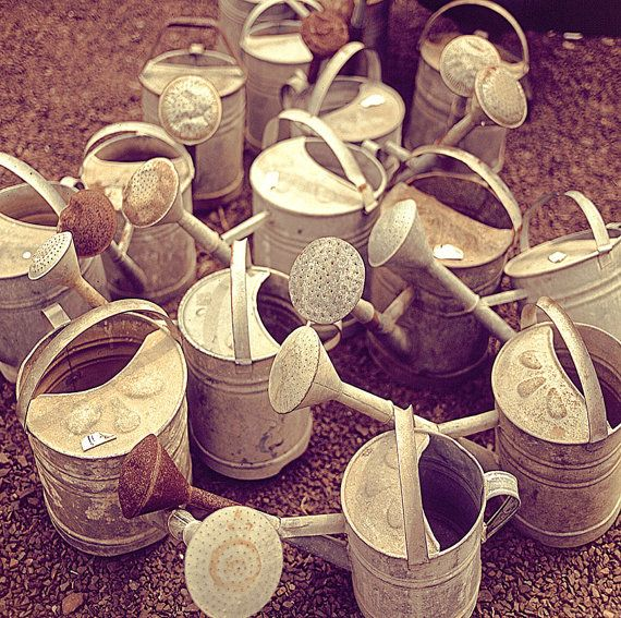 745 Best Images About Galvanized Goodies On Pinterest