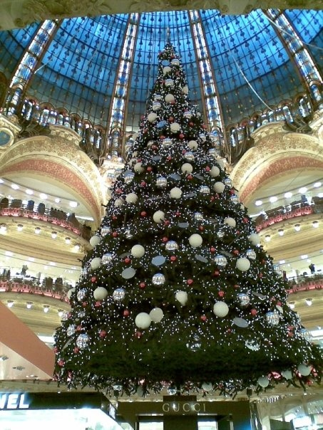 Galleries Lafayette, Paris- nothing says Christmas quite like this.