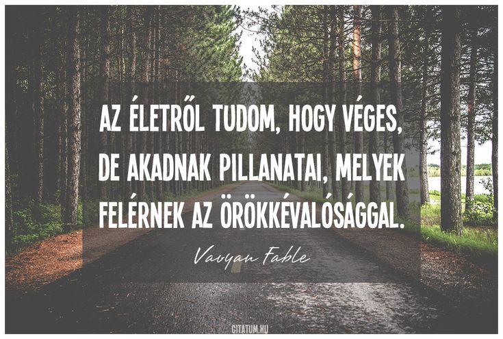 Vavyan Fable idézet az életről.