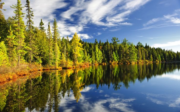 Algonquin was the first provincial park in Ontario. Explore the scenic area by canoe or foot. #algonquin #canada #canadaday
