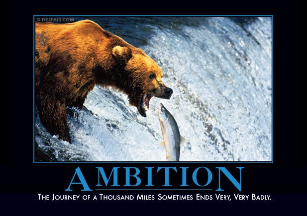 Hate the bullsh*t motivational posters??? These are for you (and me). The journey of a thousand miles sometimes ends very, very badly.