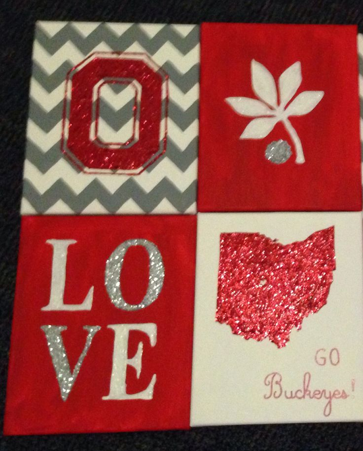 4 piece canvas set for Ohio State