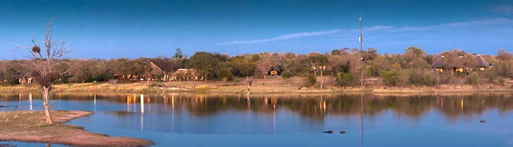 Chitwa Chitwa Game Reserve - A Luxury Safari Lodge in the Sabi Sands