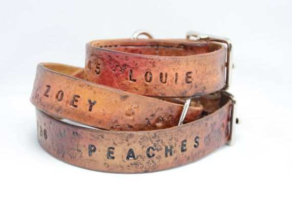 Hey, I found this really awesome Etsy listing at http://www.etsy.com/listing/116382654/personalized-leather-dog-collar-rugged