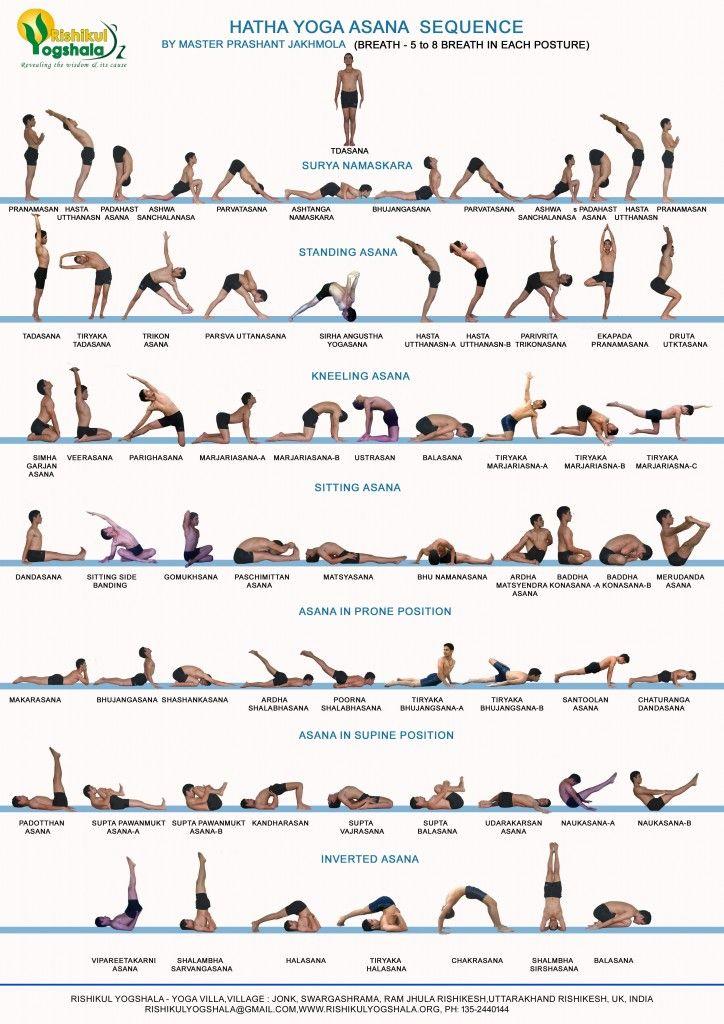hatha-yoga-724x1024.jpg 724×1024 пикс