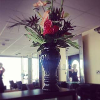 We're in love every fortnight with our gorgeous welcome flowers - we can't help but share them :)