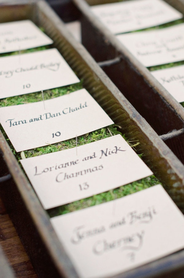 hand lettered escort cards on a bed of moss  Photography by http://theweaverhouse.com, Wedding Design, Coordination and Floral Design by http://bashplease.comDecor, Floral Design, Place Cards, Cool Ideas, Woodsy Wedding, Places Cards Holders, Names Cards, Wedding Design, Escort Cards Display