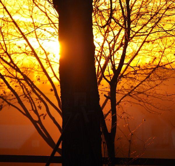 Solnedgang i desember