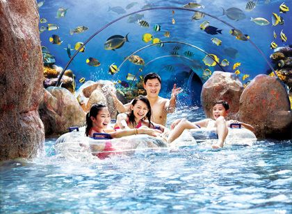 Marine Life Adventure Cove Park. Zip down adrenaline-packed waterslides and take an epic journey along Adventure River. Wohoo~ #SGTravelBuddy