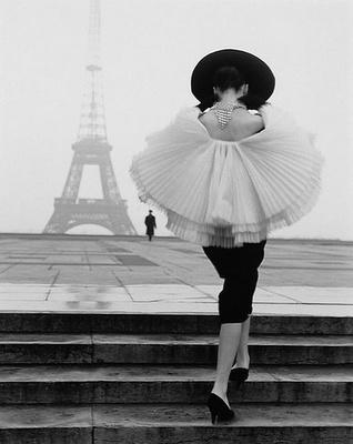 Paris wings