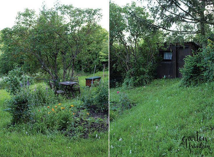 Inspirational Mein Garten im Juni