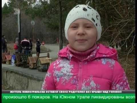 Десятки сквореников появились в челябинском городском бору  Нужны ли дом...