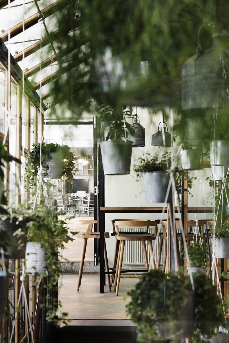 Rustiek recycled restaurant in urban jungle stijl in het centrum van Kopenhagen. Creatief idee: planten in oude zinken emmers ophangen. Rustiek meets modern! // via We-Heart.com