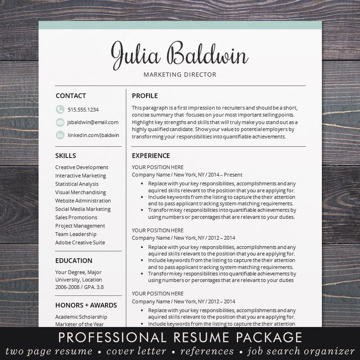 accomplishments in resume%0A Professional Resume   CV Template Mac or by TheShineDesignStudio