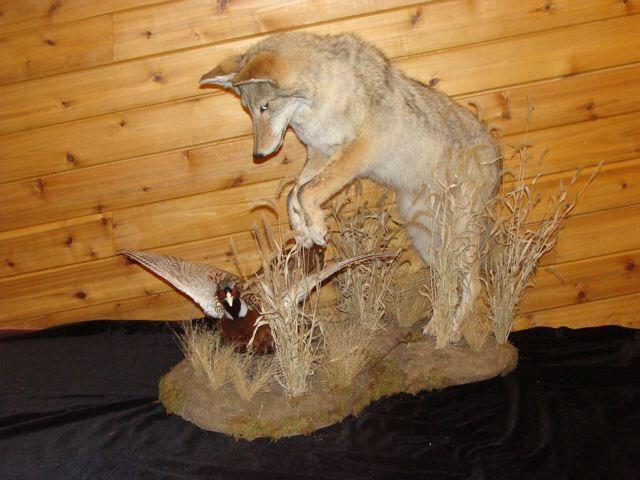 Hunting Man Cave