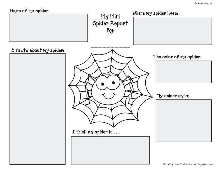 The 25+ best Spider diagram ideas on Pinterest Spider - spider diagram template