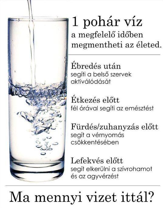 A mindennapi egészséghez a megfelelő mennyiségű víz létfontosságú