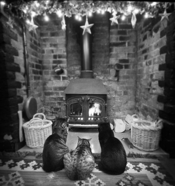 Fireside Haven by Angie Latham, via 500px