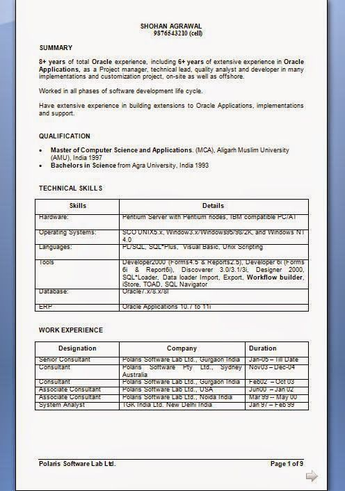 format of professional cv Sample Template Example ofExcellent CV - trail balance sheet