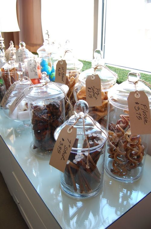 doggy hotel daycare apothecary jars for pet treats