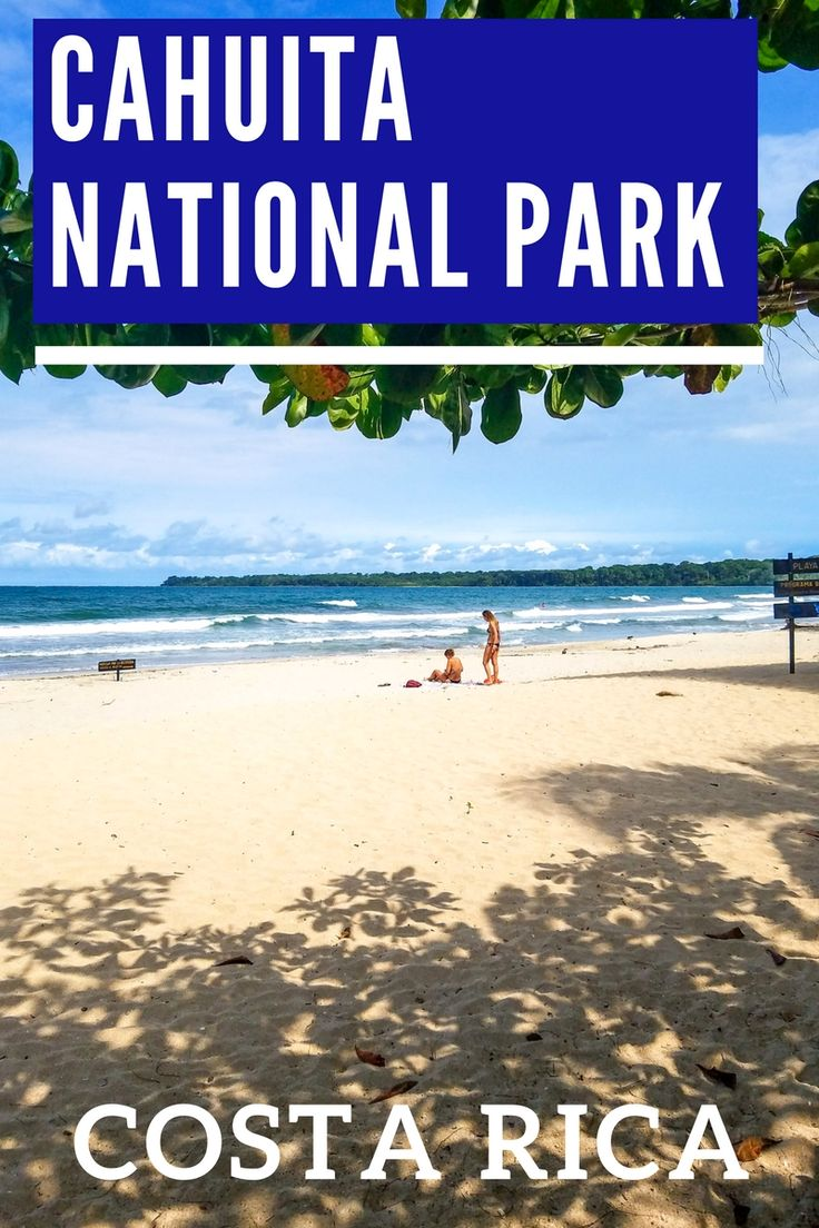 Information about Cahuita National Park, one of the most beautiful and least visited national parks in Costa Rica. It has beautiful beaches, lots of wildlife and great views. Read more about it: https://mytanfeet.com/costa-rica-national-park/cahuita-national-park-costa-rica/ Costa Rica | Costa Rica travel tips