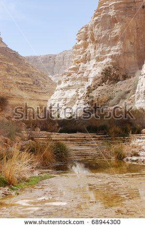 Avdat gorge nature reserve in Negev desert, Israel.