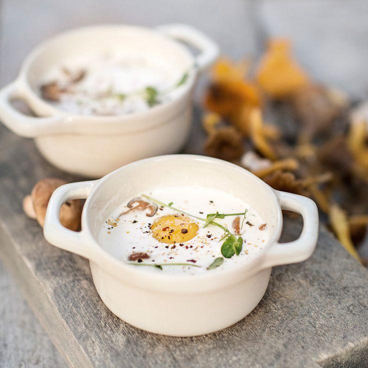 Krämig äggcocotte med stekt svamp