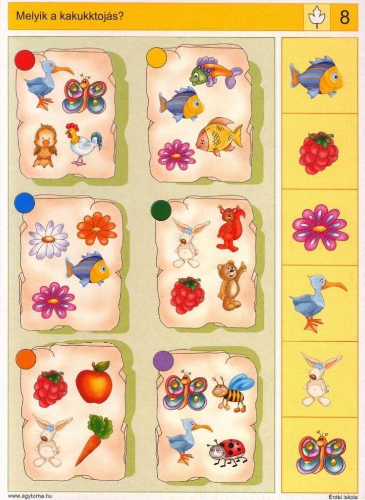 Piccolo: blad kaart 8