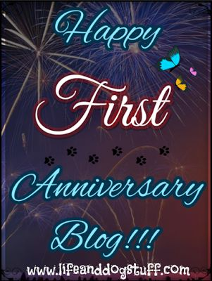 Check out our new blog post! Happy First Anniversary Blog!!!