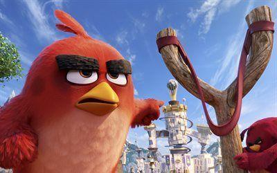 Scarica sfondi cartone animato, 2016, angry birds, commedia