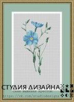 """(4) Gallery.ru / BlueBelle - Альбом """"Цветы"""""""