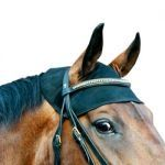 The Equine Head Cap covers both the altas and the axis. It has Velcro closures around the ears for optimal adjustablility. Laces on each side to fasten under the throat, with re-enforcement made on the exterior where the halter rests.