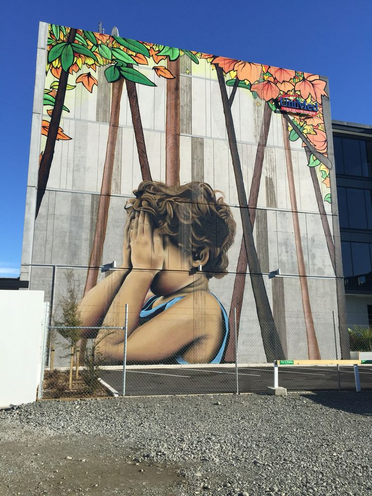 Huge work on the side of a building in Gloucester Street Christchurch by Wongi