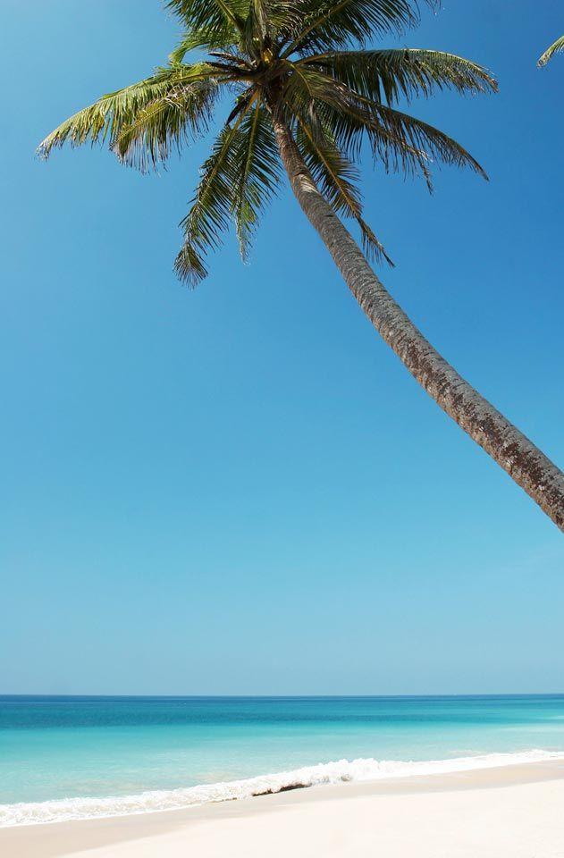 Hikkaduwa, Sri Lankan saari, jonka suurimmat vetonaulat ovat ranta, koralliriutta ja mutkaton huvielämä. Let's go! | www.tjareborg.fi