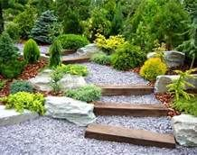 high desert landscaping ideas - Bing Images