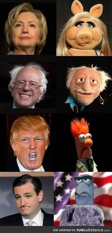 SOOOO TRUE!  SOOOOOO FUNNY!  LOL.  The Muppet show