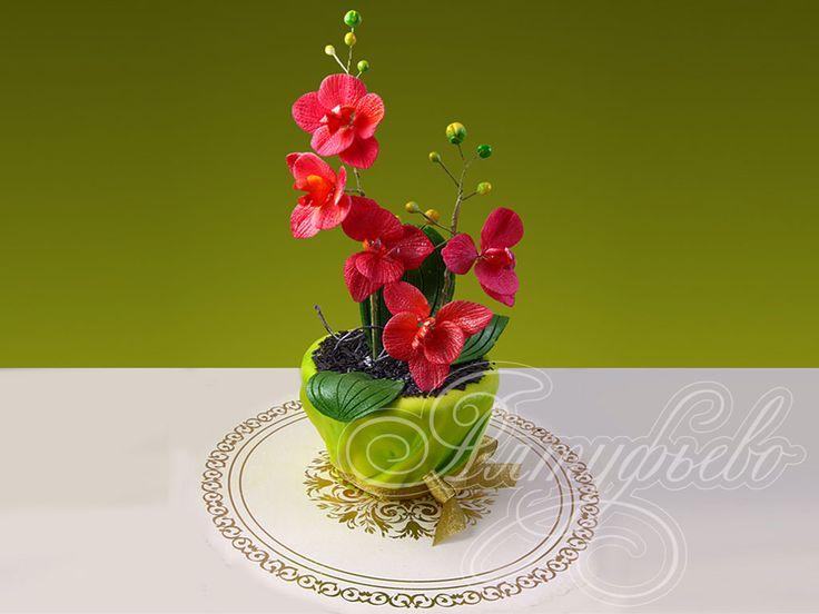 Торт на 8 марта для любимых женщин. Тортик в виде горшка с орхидеей. Creative cake, orhid,