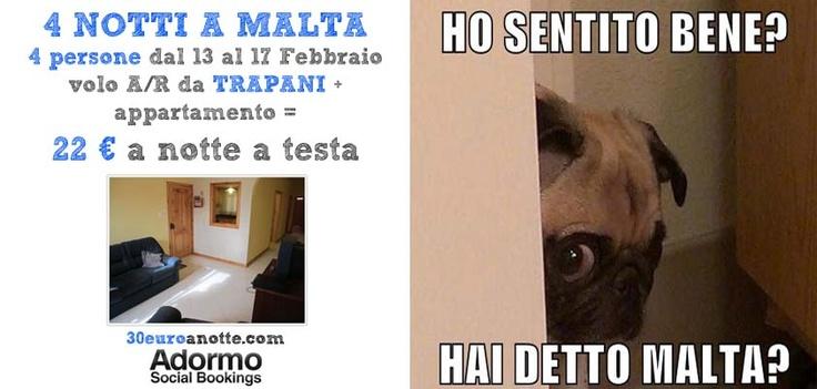 4 PERSONE A MALTA, per 4 notti dal 13 al 17 Febbraio, volo A/R da Trapani + appartamento: 22 € a notte a testa!